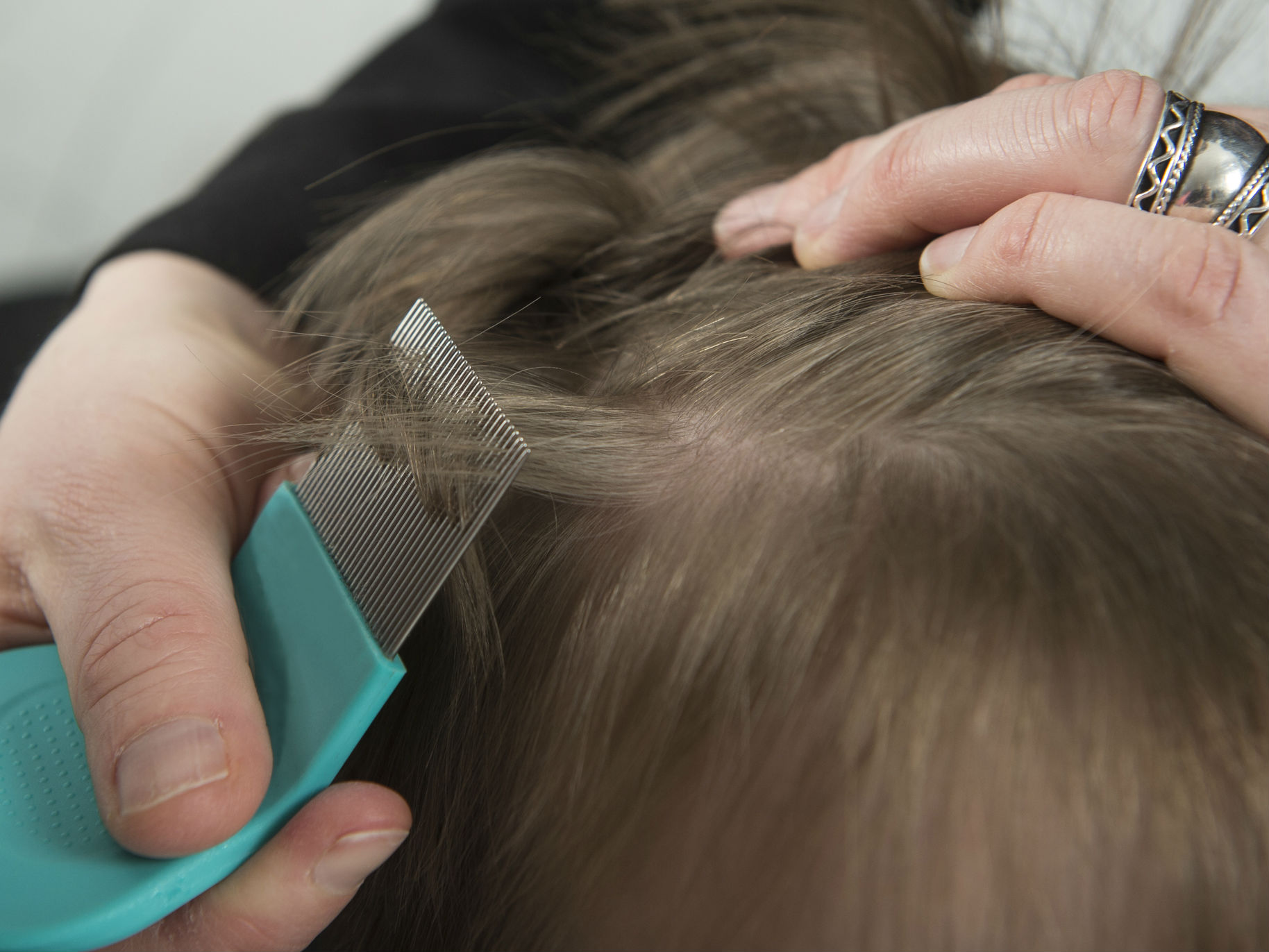 Head and linen lice, as well as methods of combating them