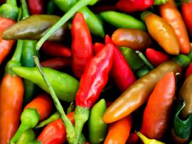 a bunch of green and red jalepeno peppers