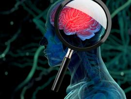 illustrated image of a brain with a magnifying glass over it