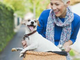 woman riding bike with dog in basket