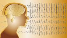picture of brain and brain waves